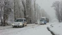 Bingöl'de kar yağışı