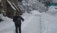 Bitlis'te 160 köy yolu ulaşıma kapalı