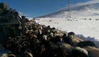 Iğdır'da donmak üzere olan 9 çoban kurtarıldı