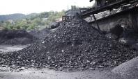 Taş kömürü ithalatı arttı