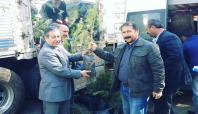 Viranşehir'de 40 bin fidan dağıtıldı