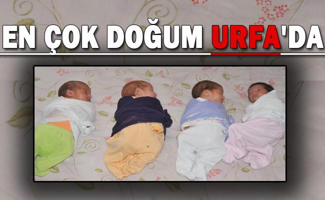 Urfa'da ne kadar doğum oldu/ 2015 verileri nedir?
