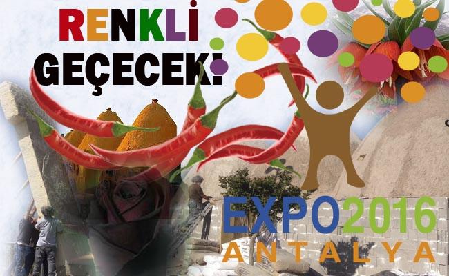 Urfa, EXPO 2016'da Yerini Aldı- EXPO Nedir