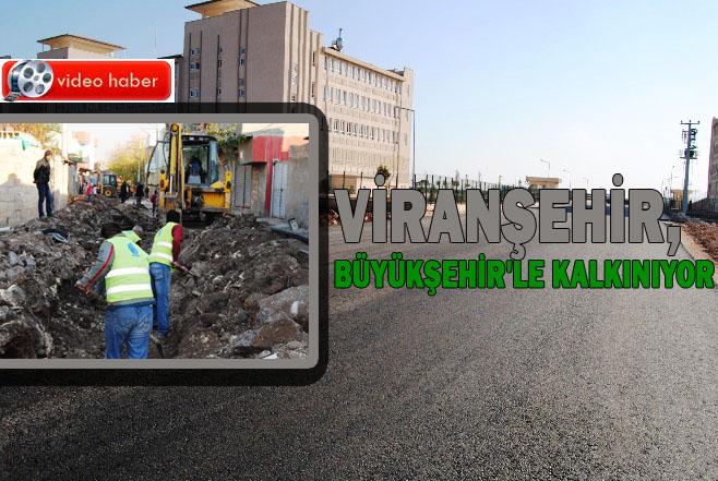 Viranşehir'de çalışmalar son hız devam ediyor