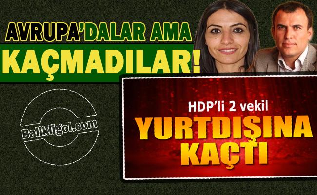 HDP Açıkladı: Kaçmadılar Avrupa'da Türkiye Aleyhinde propaganda yapıyorlar