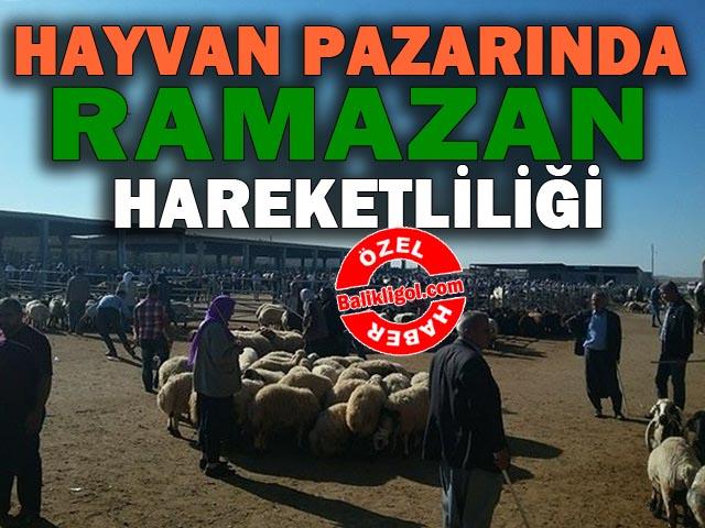 Urfa Hayvan pazarında Ramazan hareketliliği