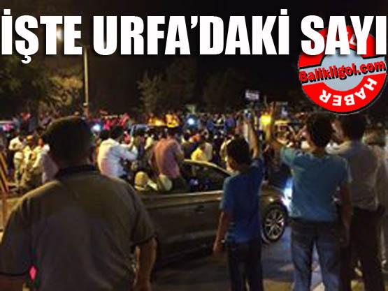 İşte Urfa'da gözaltına alınan ve görevden alınanların sayısı