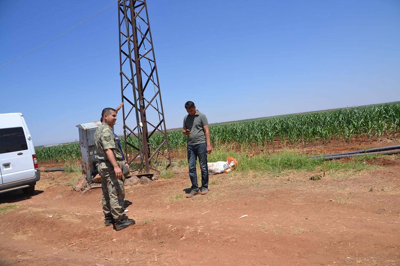 Şanlıurfa'da Tarlada içinde el bombası bulundu