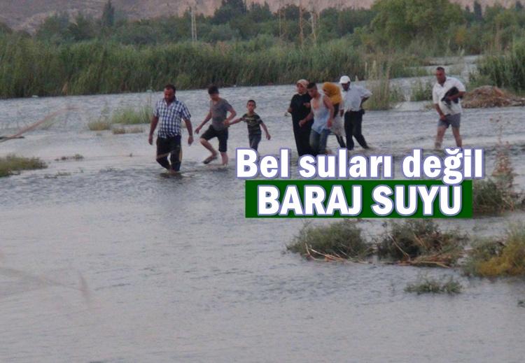 Urfa'da Baraj kapakları açılınca tarlalar su altında kaldı