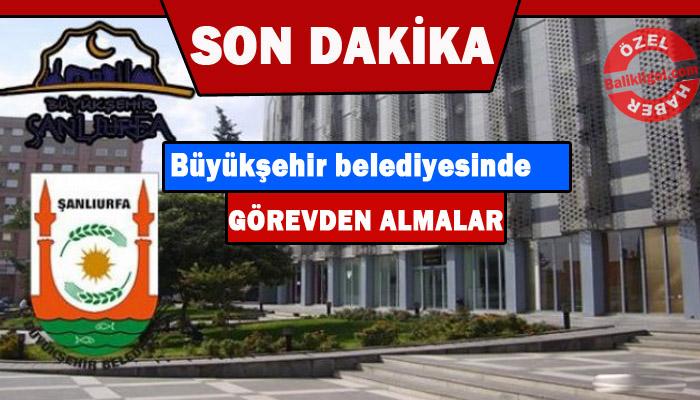 Şanlıurfa Büyükşehir belediyesine operasyon!