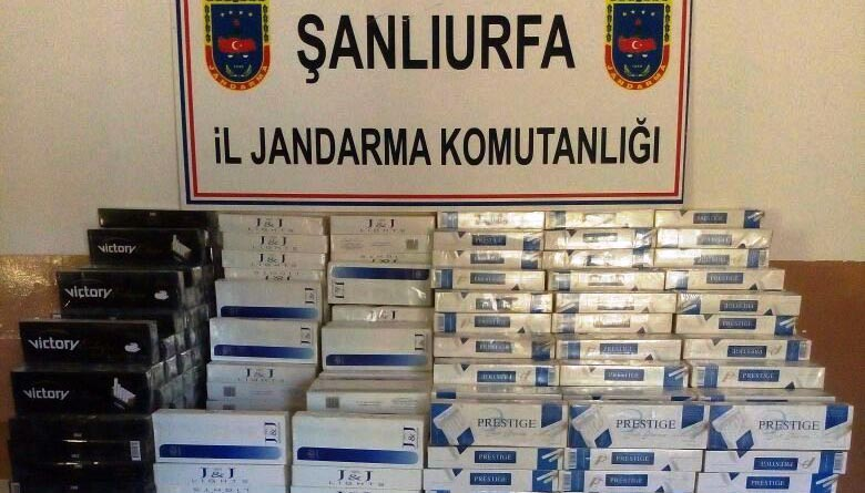 Bozova'da binlerce paket kaçak sigara yakalandı