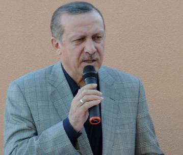 Erdoğan Urfa vekilini tebrik etti