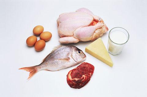 Et ve süt üreticisine hükümetten destek