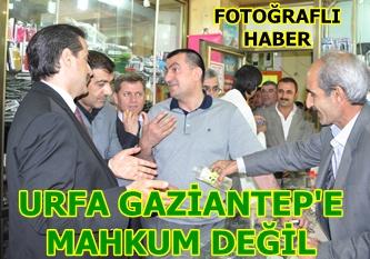 Çelik; Urfa Gaziantep'e mahkum değil