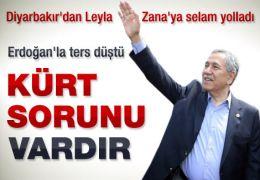 Türkiye'de Kürt meselesi vardır