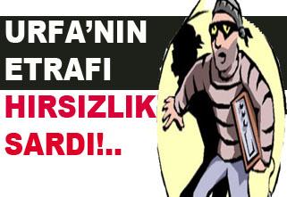 Urfa'nın Her tarafında hırsızlık