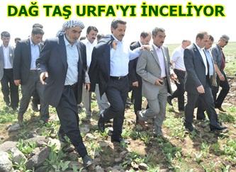 Bakan Çelik Karacağ bölgesinde seçim çalışmaları yaptı