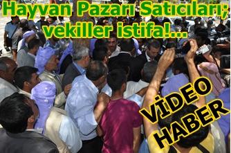 Hayvan Pazarı Satıcıları; Vekiller istifa!...