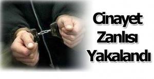 Urfalının cinayet zanlısı Edirne#039;de...