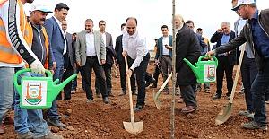Türkiye'nin en büyük şehir merkezindeki yeşil alanını Şanlıurfa'da