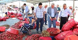 Urfa'daki İsot Üreticileri de dertli