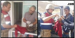 Yaralı Kartal'a Jandarma Sahip Çıktı