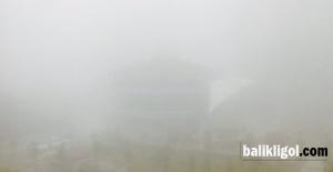 Şanlıurfa#039;da yoğun sis hayatı...