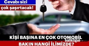 Urfa'da kişi başı otomobil sayısı kaçtır?