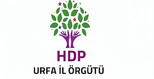 İttifakla Anlaşamayan HDP Şanlıurfa'da Büyükşehir Adayı Çıkardı