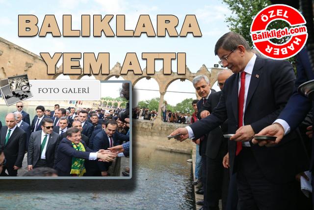 Başbakan Ahmet Davutoğlu Balıklıgöl'de