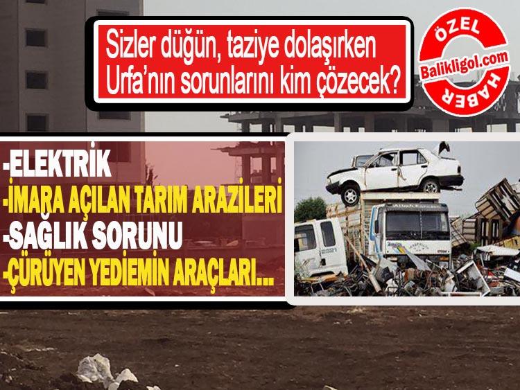 Siyasetçiler Taziye, Düğün dolaşırken Urfa'nın sorunları kim çözecek?