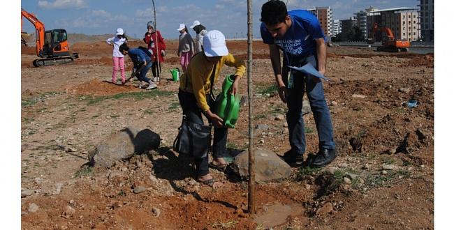 Urfa'da Minikler ağaç dikti