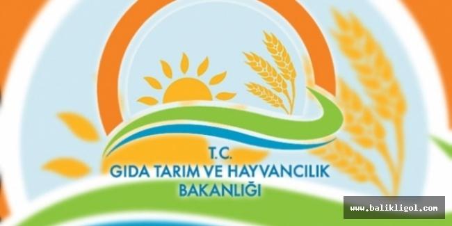 Gıda Tarım ve Hayvancılık Bakanlığı dahil 5 bakanlığa yeni atamalar yapıldı