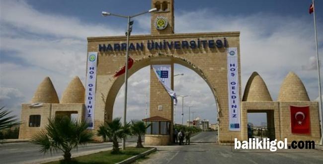 İşte Harran Üniversitesi rektör aday sayısı