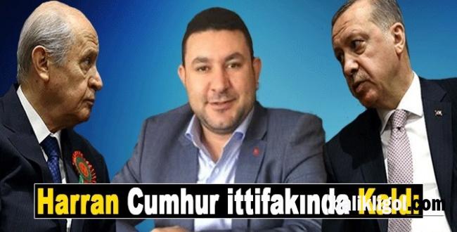 Flaş iddia! Harran'da İttifakın adayı MHP'den olacak
