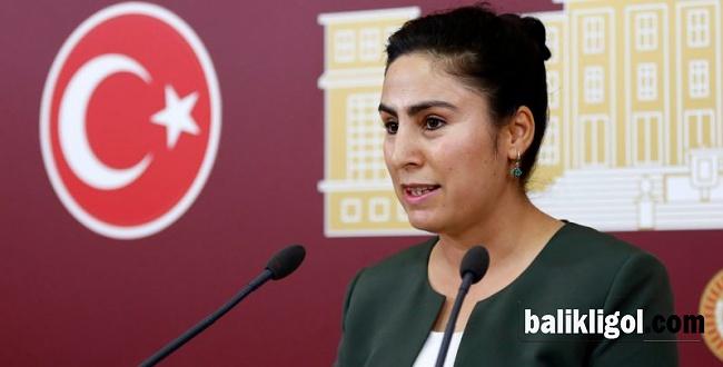 Milletvekili Ayşe Sürücü, Urfa'nın sağlık sorunlarını meclise taşıdı