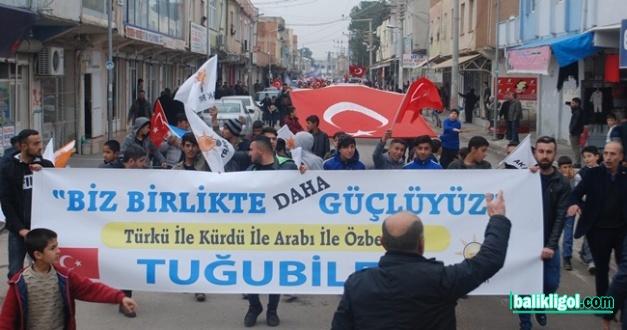 Ceylanpınar'daki 'Tuğubi Aşireti'nden AK Parti'ye Tam Destek