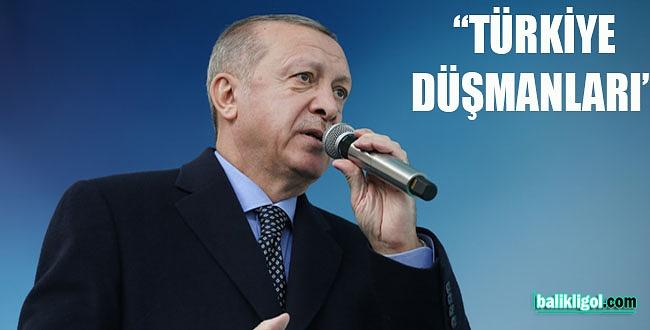 Cumhurbaşkanı Erdoğan: Türkiye düşmanlarının ağzıyla siyaset yapıyorlar