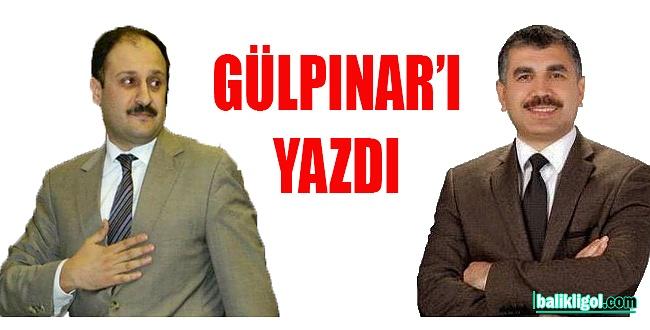 Ercan Ezgin, Kasım Gürpınar'ı yazdı