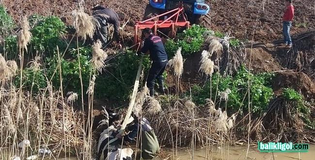 Su kanalına düşen ineği itfaiye kurtardı
