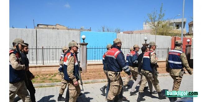 Bozova Cumhuriyet Başsavcılığı'nın dev operasyon: 27 kişi gözaltına alındı