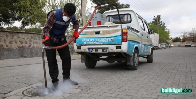 Haliliye'de Larva İle Mücadele Çalışmaları
