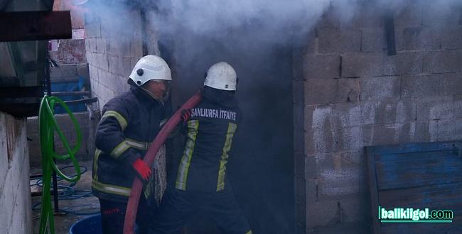 Şanlıurfa'da çocukların oynadığı ateş evin yanmasına neden oldu