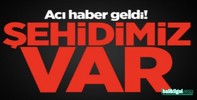 Halfeti'de Bu Geçe Çatışma Çıktı! Valilik Acı Haberi Açıkladı: 1 Şehit 2 Yaralı