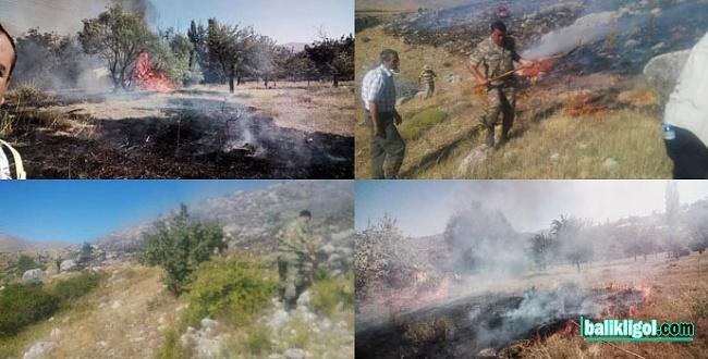 Şanlıurfa'da yetişen bir kaç ağaç da yangına kurban ediliyor, Akabe TOKİ'de yangın çıktı