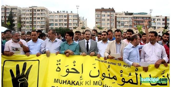 Şanlıurfa STK'ları Mursi için Mısır'a sert tepki gösterdi