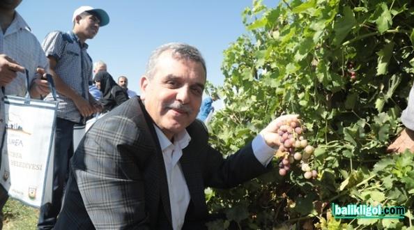 Başkan Beyazgül: Meyveleri Birlikte Toplayıp İhtiyaç Sahiplerine Dağıtıyoruz