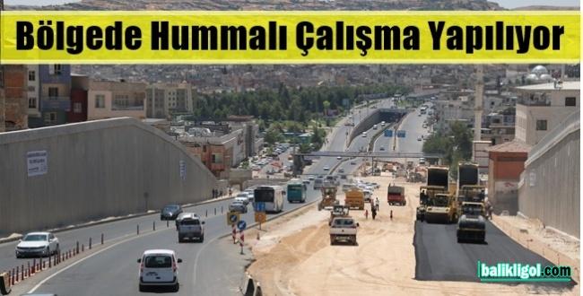 Şanlıurfa Büyükşehir Asfaltlamayı Başlattı