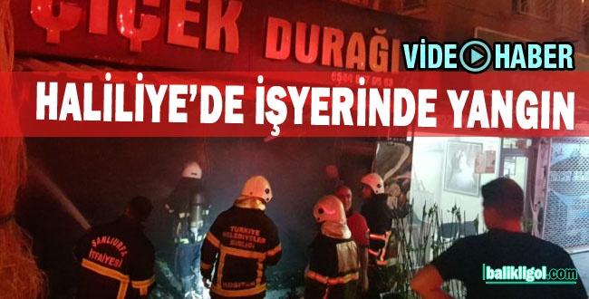 Yenişehir'de Çiçekçi Dükkanı Yandı