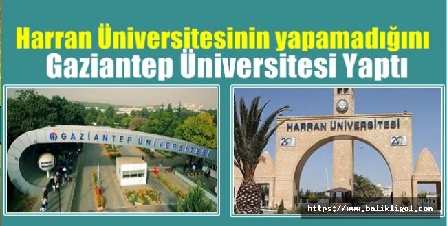 Harran Üniversitesinin yapamadığını Gaziantep Üniversitesi Yaptı